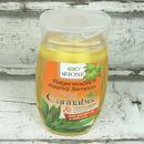 Bione Cannabis - Regenerační vlasový šampon 260 ml