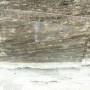 Fresnelova lupa - zvětšení 2,5x